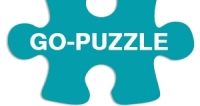 See Go puzzle FR Coupons and Deals